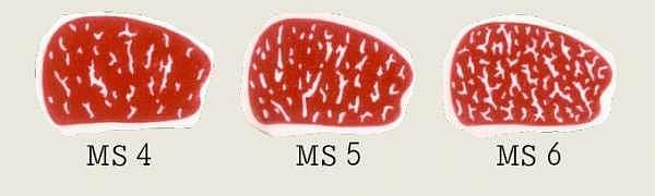 Marmorierungsstufen 4-6