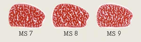 Marmorierungsstufen 7-9
