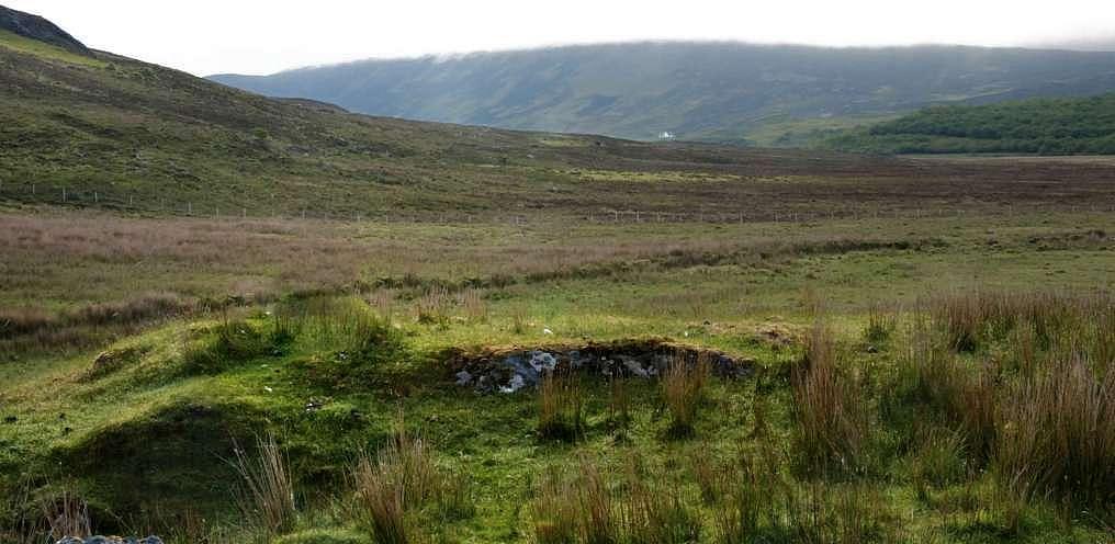 Schottische Weide