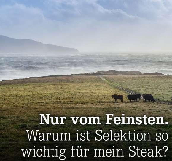Warum ist Selektion so wichtig für mein Steak?