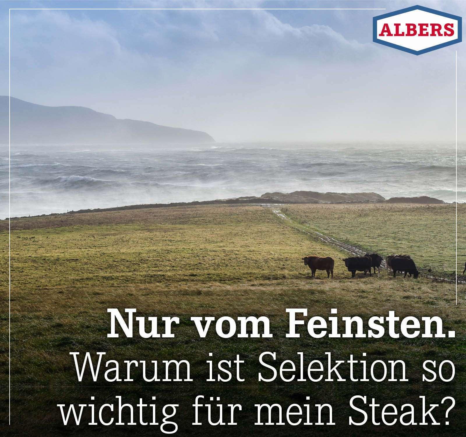 Nur vom Feinsten. Warum ist Selektion so wichtig für mein Steak?